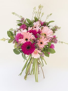 TFG: Mixed Gerbera Bunch