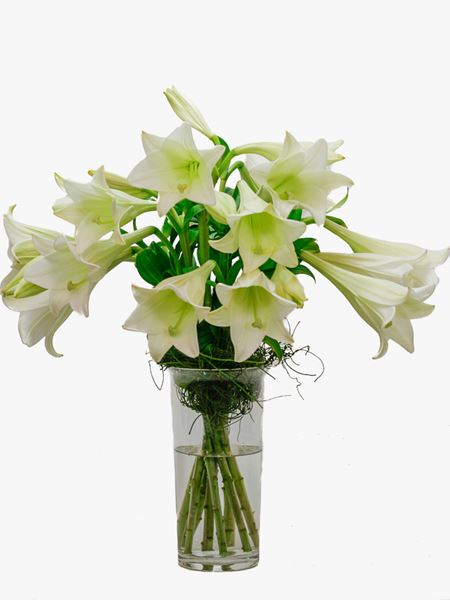Arrangements: St Joseph Lily Vase Arrangement